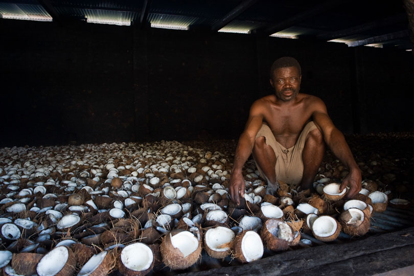 Worker drying coconuts over a heated grill, Quelimane Mozambique