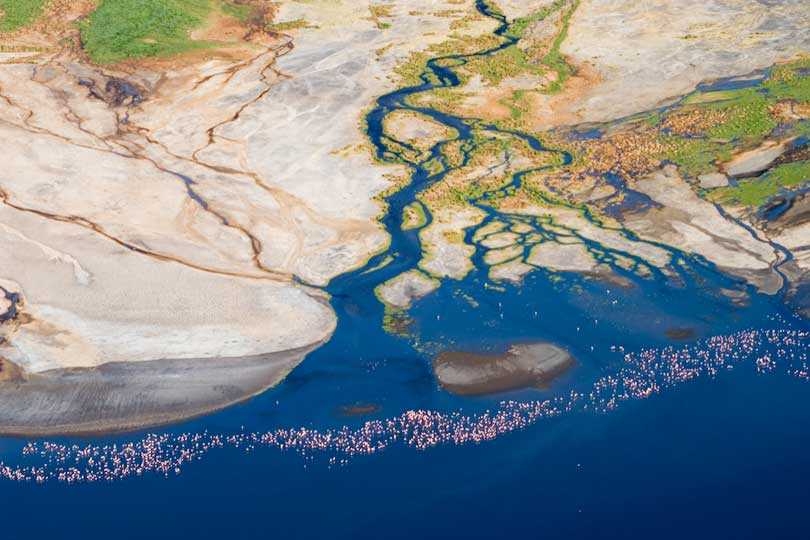 River delta with flamingos, Lake Natron, Tanzania